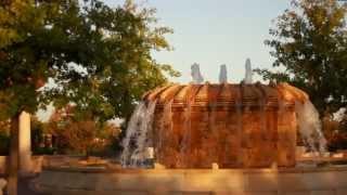 Newman Village -Life Happens Here