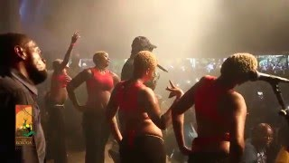 getlinkyoutube.com-Koffi Olomide performs Selfie-Live at The Koroga Festival