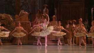 getlinkyoutube.com-เรียนเต้น - การเต้นบัลเล่ต์อย่างมืออาชีพ