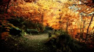 Ishq - Lotus [Full Album HD]