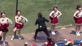 getlinkyoutube.com-コンバットマーチ↩️SUNRISE(早稲田大学応援曲):2014年春季リーグ東大2回戦