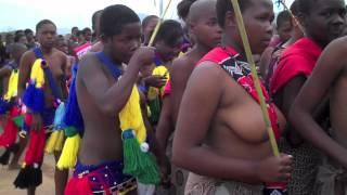 getlinkyoutube.com-Umhlanga Ceremony, Swaziland, 2012