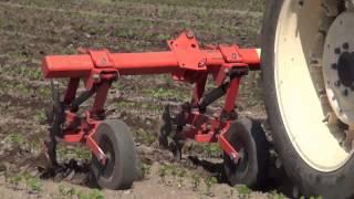 getlinkyoutube.com-Cultivating in soybean field 大豆畑でカルチ