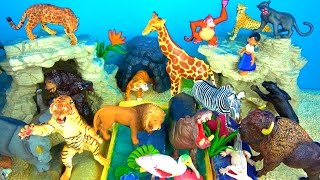 getlinkyoutube.com-ZOO Wild Animals Learn Names and Sounds and Fun Facts - Kids Educational Toys