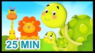getlinkyoutube.com-La famille Tortue - 25 min - Comptines sur les animaux pour les bébés