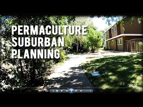 Permaculture Tip of the Day - Permaculture Suburban Planning