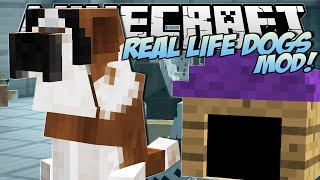 getlinkyoutube.com-Minecraft | REAL LIFE DOGS MOD!! (Puppies, Kennels & More!) | Mod Showcase