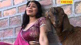 Tharo Re Boli Meethi Moruda Rani Rangili Rajsthani Hot Dance Chetak Cassettes