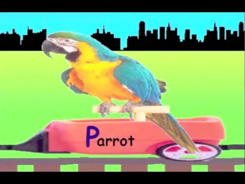 Learn Alphabet P Train - learning alphabet P Sounds for kids