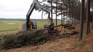 getlinkyoutube.com-Harvester TMO - Processamento de Pinus