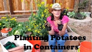 getlinkyoutube.com-Planting Potatoes in Containers