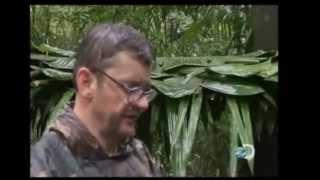 getlinkyoutube.com-sozinho na selva part 5