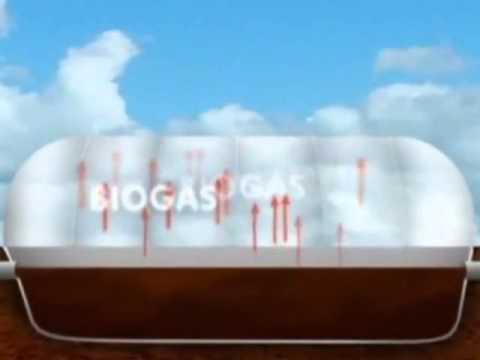 Biodigestor como funciona e pra que serve