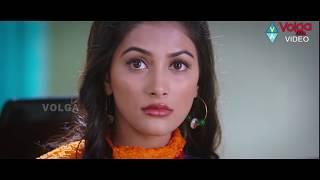 Telugu Latest Scenes || Pooja Hegde Latest Scenes || Volga Videos 2017