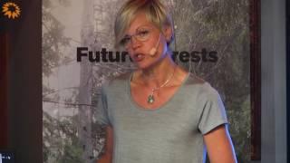 En ny skogspolitik på väg – vem sätter agendan? - Elisabeth Backteman, statssekreterare