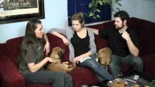 getlinkyoutube.com-Animal Communication Specialist Claudia Hehr Talks to Puggles Buf & Henry