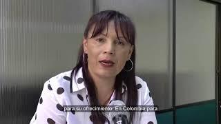 M.E.N. Otorgó renovación de Registro Calificado en Licenciatura Inglés Francés