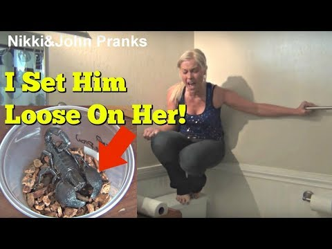 10 April Fools Pranks Involving Bugs