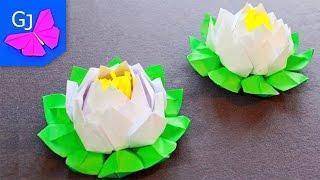 getlinkyoutube.com-Цветок лотос из бумаги