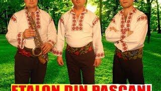 Etalon din Pascani - Muzica moldoveneasca de petrecere (AUDIO HD SPIROS GALATI)