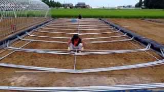 農業用ビニールハウスの建て方 ①アーチパイプを揃えて立てる