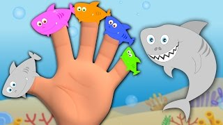 getlinkyoutube.com-shark finger family | nursery rhymes | kids songs | baby videos