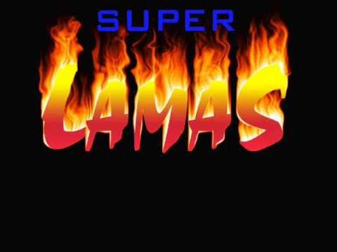 LA VASECTOMIA super lamas