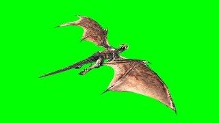 getlinkyoutube.com-Green Screen Monstrous Dragon Flies - Footage PixelBoom