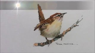getlinkyoutube.com-How to paint a bird, Wren tutorial. Quick and easy! With Peter Sheler