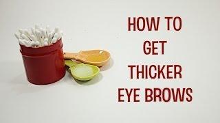 getlinkyoutube.com-How to Grow Thicker Eyebrows