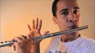 getlinkyoutube.com-As Sete Notas na Flauta transversal, dó, ré, mi...