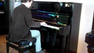 African Flower - Duke Ellington - Played on a Steinway Model V Piano at Besbrode Pianos