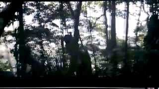 Christopher Columbus untold and the story of Hatuey