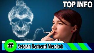 Inilah Yang Dialami tubuh setelah berhenti merokok