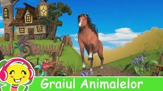 getlinkyoutube.com-Graiul Animalelor - CanteceGradinita.ro - Cantec pentru copii cu animale