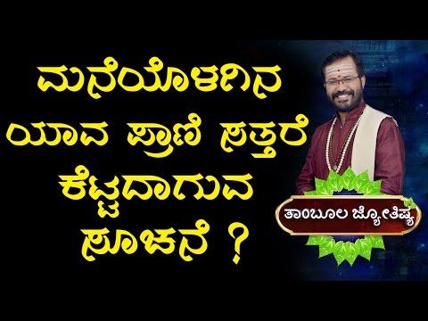 About Keeping Pets | Astrology | Kannada Astrology | Ravi Shanker Guruji | Horoscope