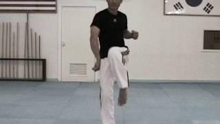 getlinkyoutube.com-Taekwondo Speed Kicking Tutorial - How To Kick Faster Part 1 (taekwonwoo)