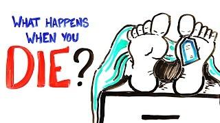 flushyoutube.com-What Happens When You Die?
