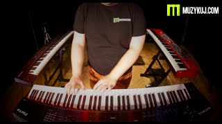 Kurzweil Forte, Nord Stage 2, Yamaha CP4, Roland RD-800 - BIG COMPARE.