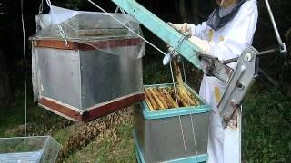 getlinkyoutube.com-Moderní včelaření 12.wmv