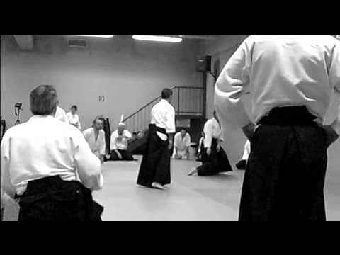Aikido & Vienna, january 2012.