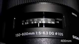 getlinkyoutube.com-SIGMA 150-600mm F/5-6.3 DG OS HSMとTAMRON SP 150-600mm F/5-6.3 Di VC USDのAF速度