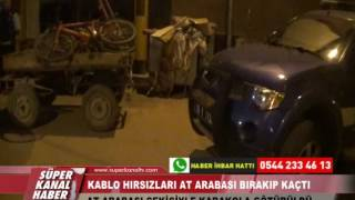 KABLO HIRSIZLARI AT ARABASI BIRAKIP KAÇTI