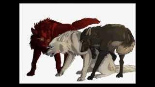 getlinkyoutube.com-Agony - Wolf Speedpaint