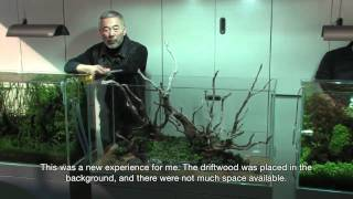 getlinkyoutube.com-TAKASHI AMANO LAYOUT SEMINAR A 120cm aquarium tank No.5 2012.02.22