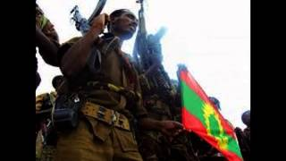 getlinkyoutube.com-UMAR SULEYMAN - SHUGGUXII TIYYA   NEW HD OROMO SONG/MUSIC 2015/14