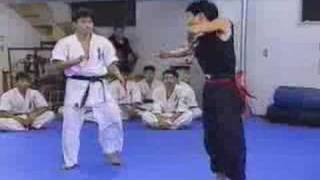 getlinkyoutube.com-Karate Vs Kung Fu