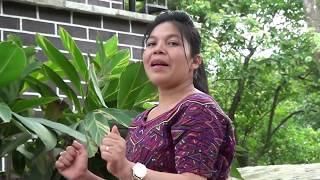 Solista Ana Raymundo Cobo Video Clip Vol,1// El cordero de la cruz