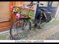 Amsterdam City Bike Tour 24 2 2016