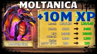 getlinkyoutube.com-Castle Clash: Giving Dragon 10 MILLION Experience - Moltanica